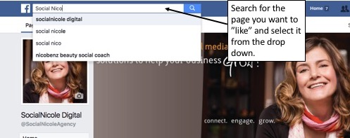 Search for a Facebook Page